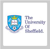 جامعة شيفيلد